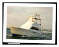 Charter Fishing Destin