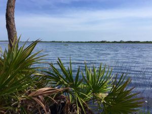 Another dune lake view -- 30A makes a great destination for ecotourism vacations!