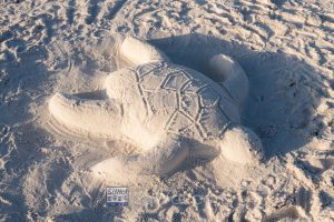 A turtle sand sculpture -- turtle watching makes a great ecotourism vacation to Dune Allen beach in 30A / South Walton Florida