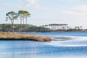 A beautiful view of Grayton Beach, FL